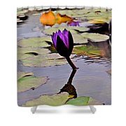 Botanical Garden Lotus Flowers Shower Curtain