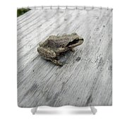 Botanical Gardens Tree Frog Shower Curtain