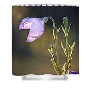 Botanical Purple Iris Shower Curtain