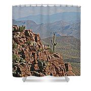 Bottom Of The Sierra Ancha Forest Shower Curtain