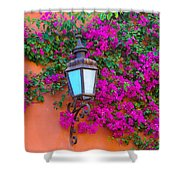 Bougainvillea And Lamp, Mexico Shower Curtain