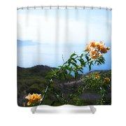 Bougainvillea Shower Curtain