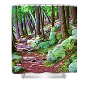 Boulder Forest Shower Curtain