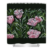 Boulder Tulips Shower Curtain