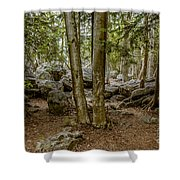 Boulder Woods Shower Curtain