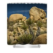 Boulders In The Joshua Tree National Park Shower Curtain