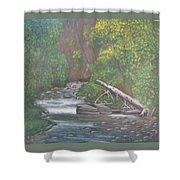 Boundary Creek  Bc Shower Curtain
