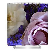Roses And Violets  Shower Curtain