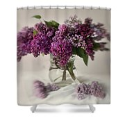 Bouquet Of Lilacs In A Glass Pot Shower Curtain
