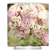 Bouquet Of Vintage Roses Shower Curtain