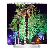 Bournemouth Winter Gardens At Night Shower Curtain