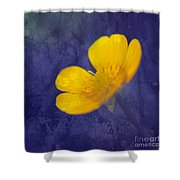 Bouton D Or - Tb01c Shower Curtain