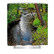 Bow River Near Lake Louise Campground In Banff National Park-ab Shower Curtain