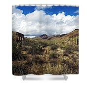 Bowen Homestead Ruins Shower Curtain