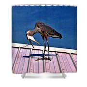Bowing Blue Heron Shower Curtain