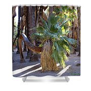 Bowing Palm Shower Curtain