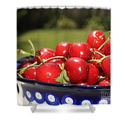 Bowl Of Cherries In The Garden Shower Curtain