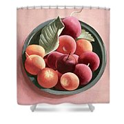 Bowl Of Fruit Shower Curtain by Tomar Levine