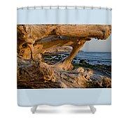 Bowling Ball Beach Framed In Driftwood Shower Curtain