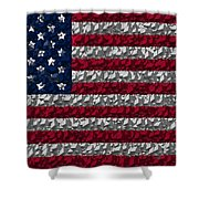 Boxed Flag Shower Curtain