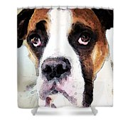 Boxer Art - Sad Eyes Shower Curtain by Sharon Cummings
