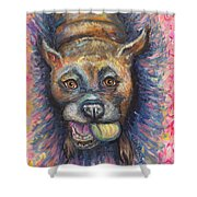 Boxer Buddy Shower Curtain