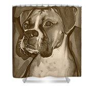 Boxer Dog Sepia Print Shower Curtain by Robyn Saunders
