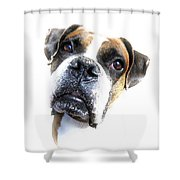 Boxer Expression Shower Curtain