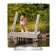 Boxer On Lake Dock Shower Curtain