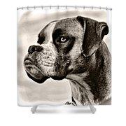 Boxer Profile Shower Curtain