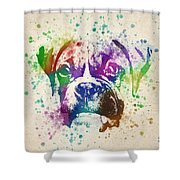 Boxer Splash Shower Curtain