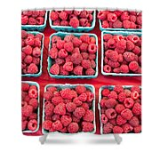 Boxes Of Fresh Red Raspberries Shower Curtain