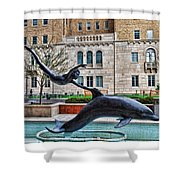Boy With A Dolphin Shower Curtain