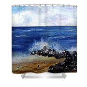 Boynton Waves Shower Curtain