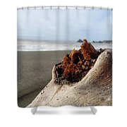 Br0039 Shower Curtain