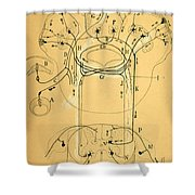 Brain Vestibular Sensor Connections By Cajal 1899 Shower Curtain