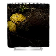 Bramble Tree Shower Curtain