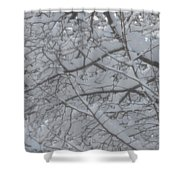 Branched Snow Shower Curtain