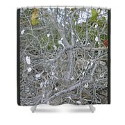 Branches 1 Shower Curtain