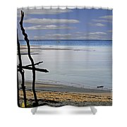Branches 3 Shower Curtain