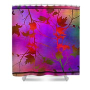 Branches In The Mist 13 Shower Curtain