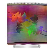 Branches In The Mist 55 Shower Curtain