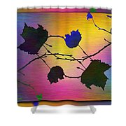 Branches In The Mist 71 Shower Curtain