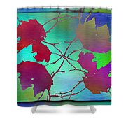 Branches In The Mist 72 Shower Curtain