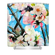 Branches Of Almond Tree Shower Curtain