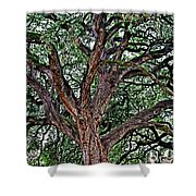 Branches Of Brio Shower Curtain