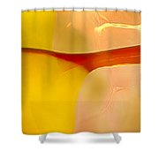 Branches Of Light Shower Curtain