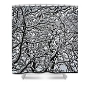 Branches Of Our Life Shower Curtain