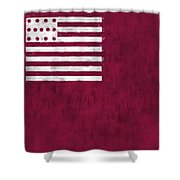 Brandywine Flag Shower Curtain by World Art Prints And Designs