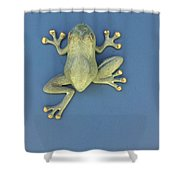 Brass Frog Shower Curtain